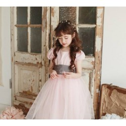Phelfish Softpink Tutu Dress