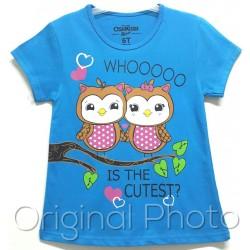 Twins Owl
